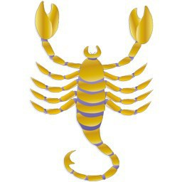Scorpio Horoscope Tomorrow December 25 2015 | Daily Horoscope